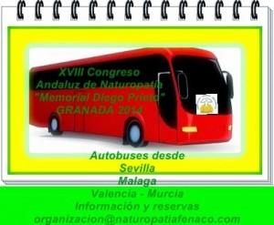 b_300_262_16777215_00_http___1.bp.blogspot.com_-CEssZV-uHhY_VFUmJPBDCvI_AAAAAAAADlg_MPRl2KkRgRQ_s1600_autobus.jpg