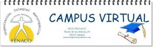 b_300_262_16777215_00_http___www.naturopatiafenaco.com_images_cabecera_campus_virtual.jpg