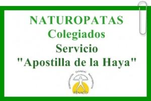 b_300_262_16777215_00_images_Servicio_Apostilla_Haya.JPG