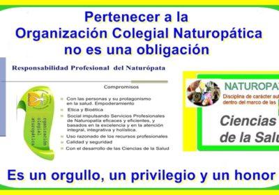 Pertenecer a la Organización Colegial Naturopática es garantía de calidad profesional en el sentido de servicio al usuario de los Servicios Profesionales de Naturopatía, ya que garantiza cumplir con aquellos requisitos imprescindibles para el ejercicio profesional de la Naturopatía